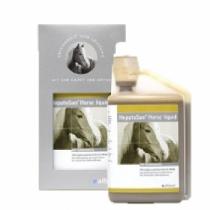 HepatoSan Horse Liquid 1L
