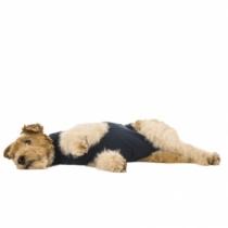 Medical Pet Shirt Hund